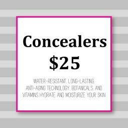 _Cover_Concealers1